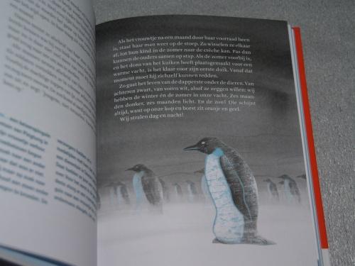 Keizerspinguins uit Winterdieren (Bibi Dumon Tak & Martijn van der Linden)