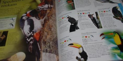 De geillustreerde dierenatlas (vogels)