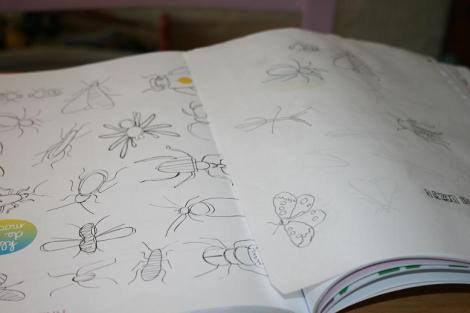 insecten overtrekken