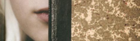 Familiegeheim (Caja Cazemier en Martine Letterie)