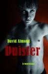 Duister David Almond